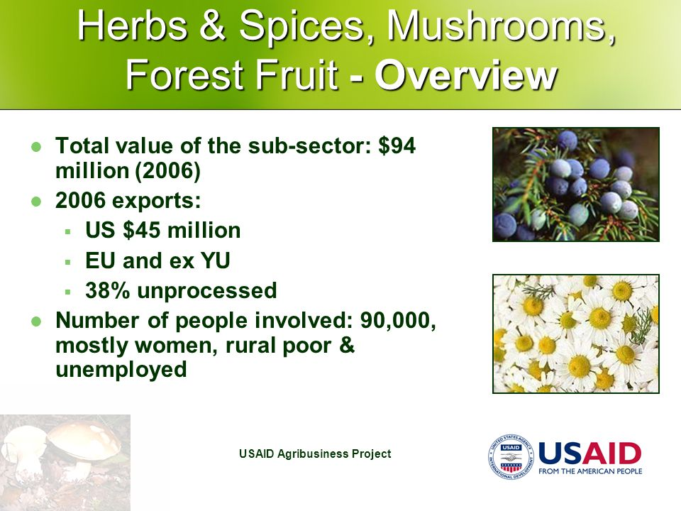 USAID Agribusiness Project Herbs & Spices, Mushrooms, Forest Fruit - Overview Herbs & Spices, Mushrooms, Forest Fruit - Overview Total value of the sub-sector: $94 million (2006) 2006 exports:  US $45 million  EU and ex YU  38% unprocessed Number of people involved: 90,000, mostly women, rural poor & unemployed