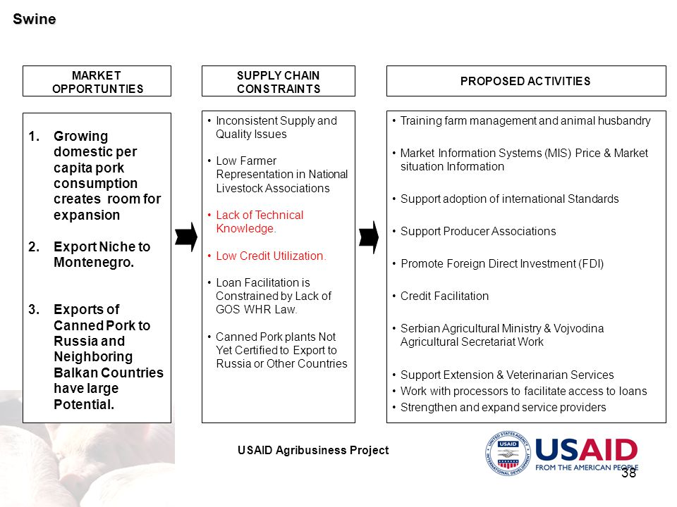 USAID Agribusiness Project 38 MARKET OPPORTUNTIES PROPOSED ACTIVITIES 1.