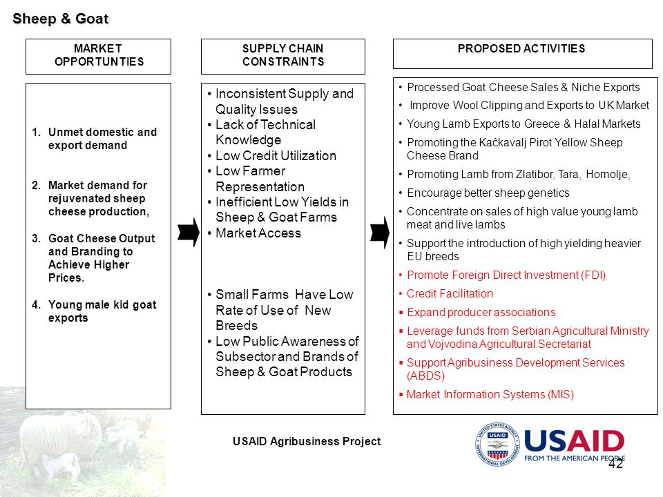 USAID Agribusiness Project 42 MARKET OPPORTUNTIES PROPOSED ACTIVITIES 1. 1.Unmet domestic and export demand 2. 2.Market demand for rejuvenated sheep c