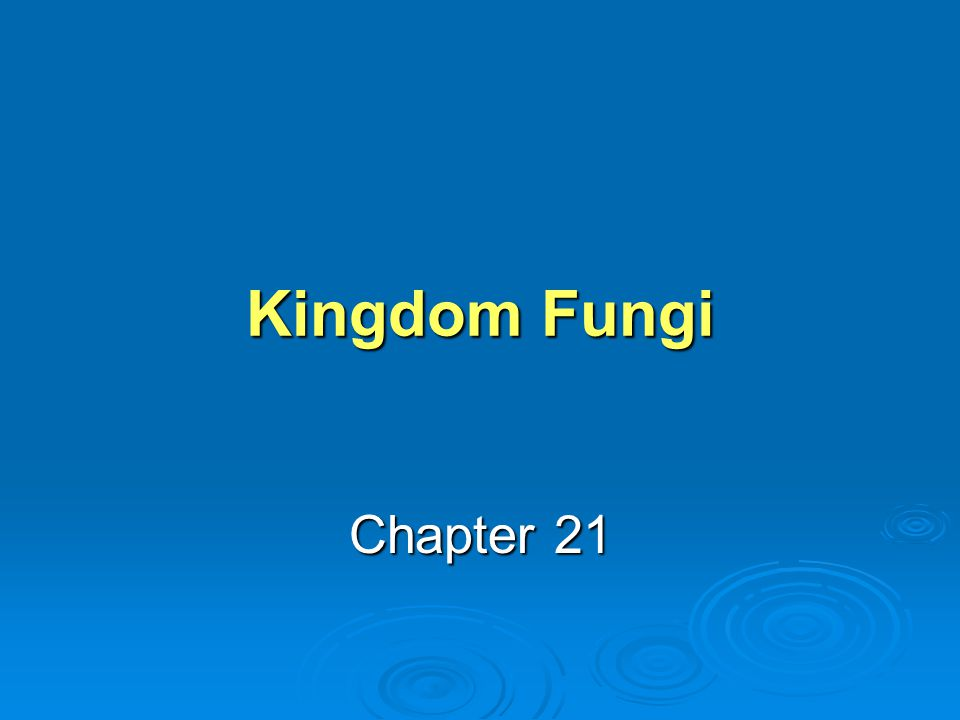 Kingdom Fungi Chapter 21