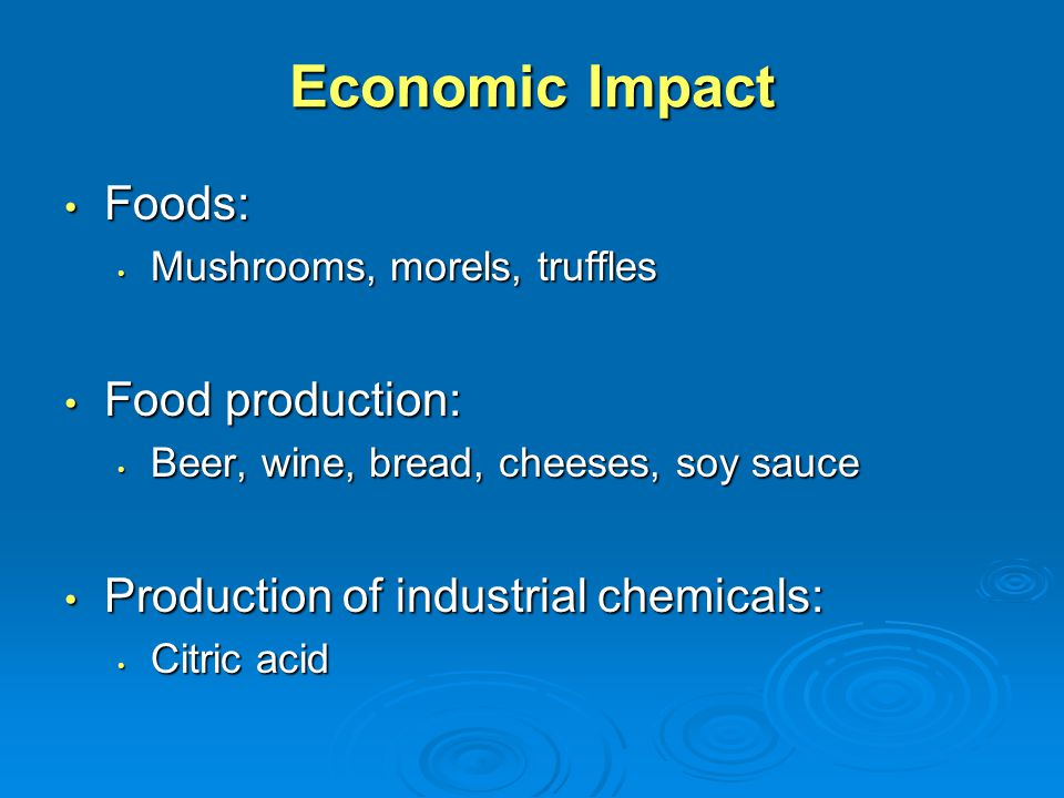 Economic Impact Foods: Foods: Mushrooms, morels, truffles Mushrooms, morels, truffles Food production: Food production: Beer, wine, bread, cheeses, so
