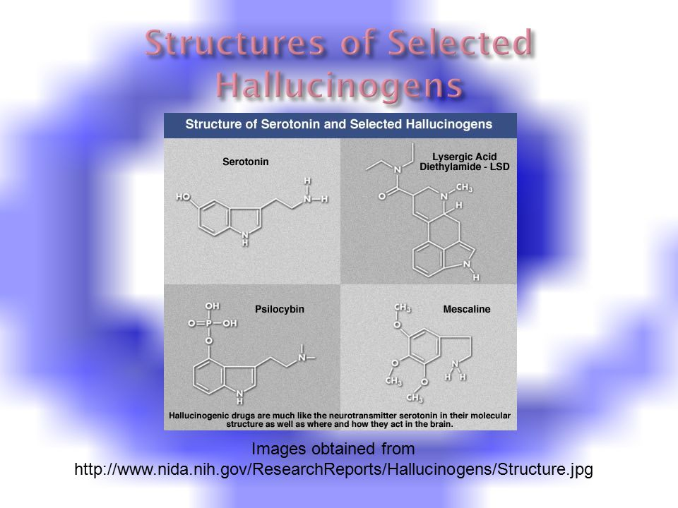Images obtained from http://www.nida.nih.gov/ResearchReports/Hallucinogens/Structure.jpg