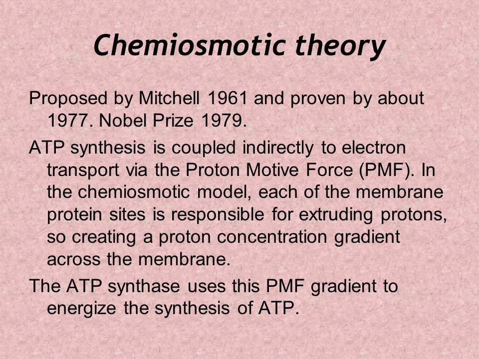 Chemiosmotic theory Proposed by Mitchell 1961 and proven by about 1977.