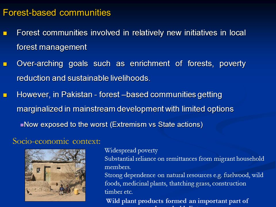 Forest-based communities Forest communities involved in relatively new initiatives in local forest management Forest communities involved in relativel