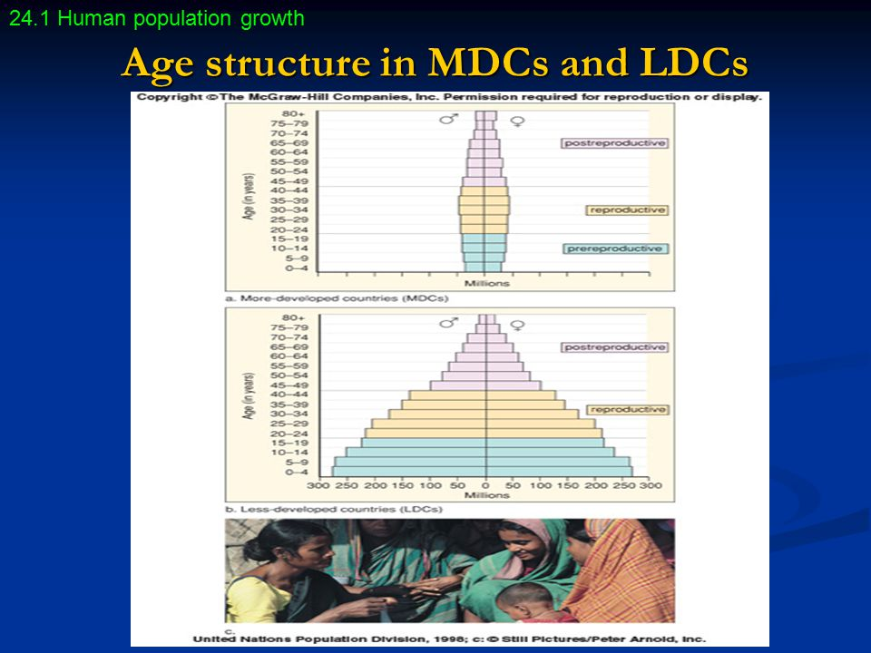Age structure in MDCs and LDCs 24.1 Human population growth
