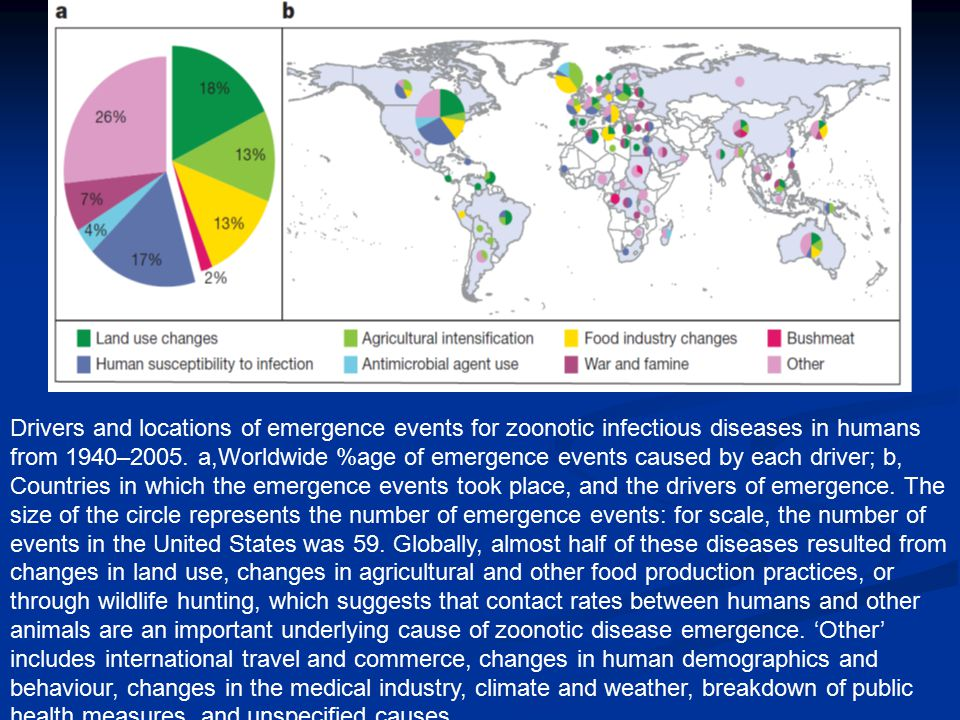Drivers and locations of emergence events for zoonotic infectious diseases in humans from 1940–2005. a,Worldwide %age of emergence events caused by ea
