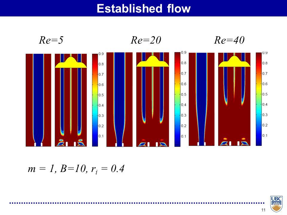 11 Established flow m = 1, B=10, r i = 0.4 Re=5 Re=20 Re=40