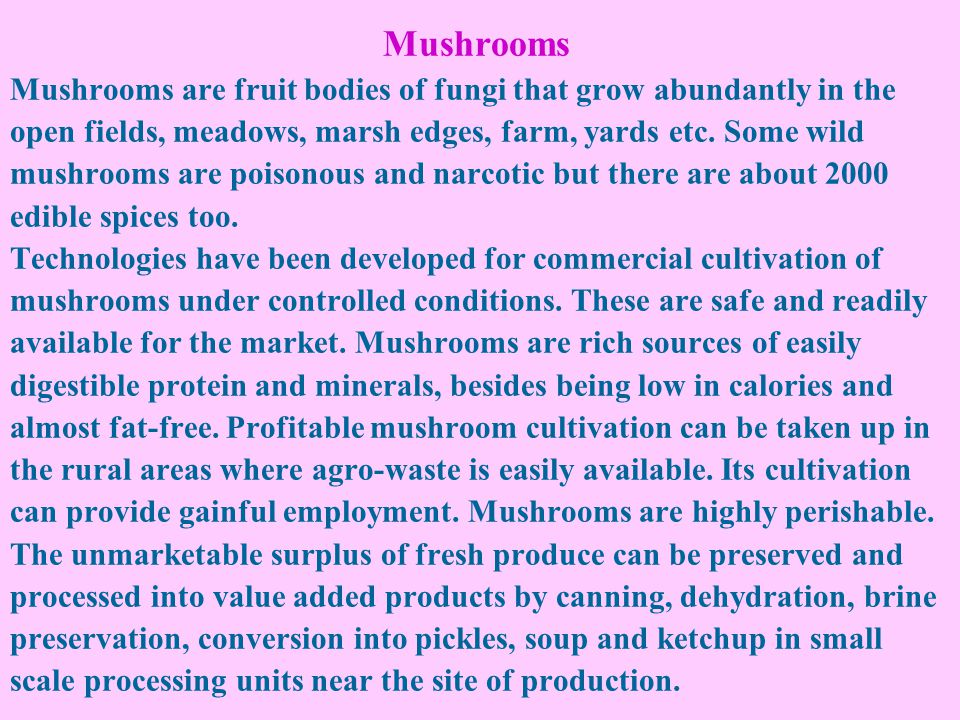 Mushrooms Mushrooms are fruit bodies of fungi that grow abundantly in the open fields, meadows, marsh edges, farm, yards etc. Some wild mushrooms are