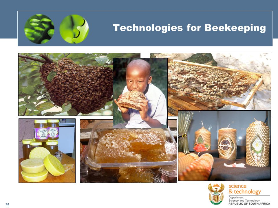 35 Technologies for Beekeeping