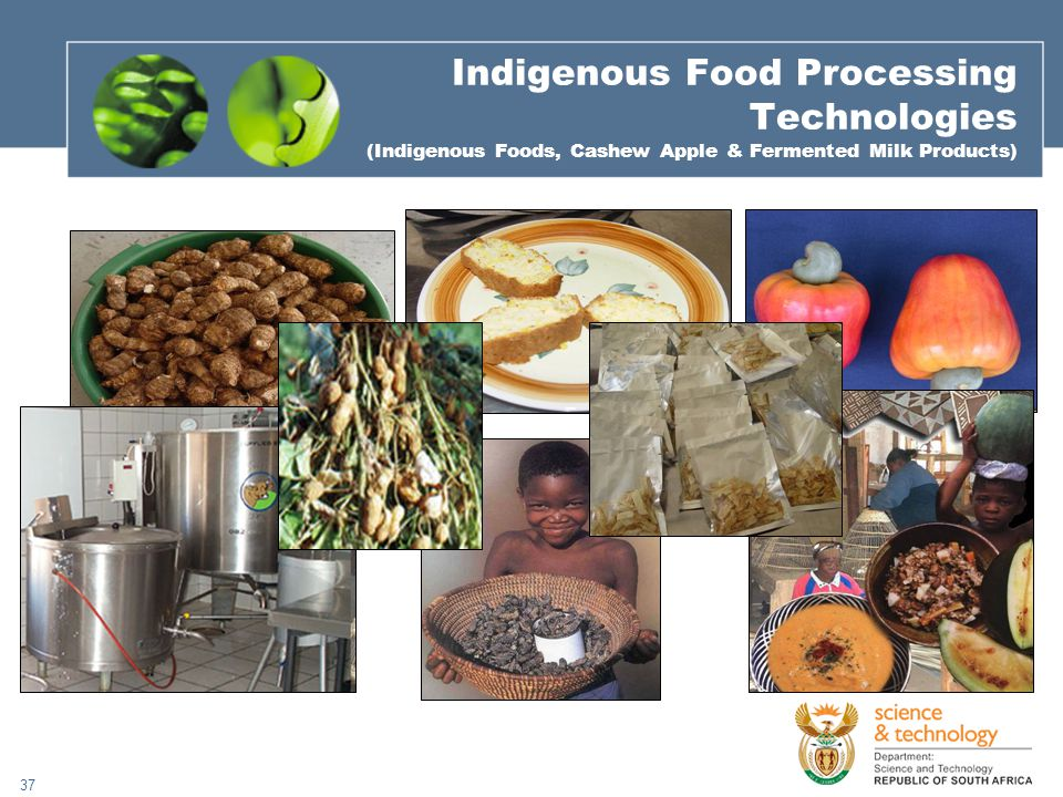 37 Indigenous Food Processing Technologies (Indigenous Foods, Cashew Apple & Fermented Milk Products)