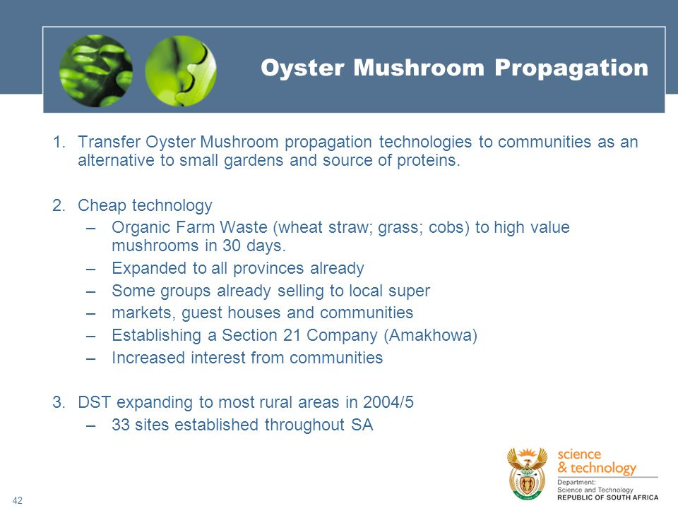 42 Oyster Mushroom Propagation 1.Transfer Oyster Mushroom propagation technologies to communities as an alternative to small gardens and source of proteins.