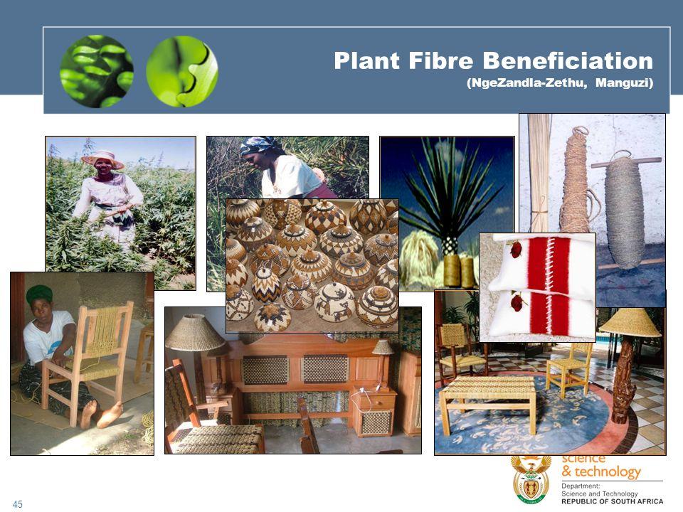 45 Plant Fibre Beneficiation (NgeZandla-Zethu, Manguzi)