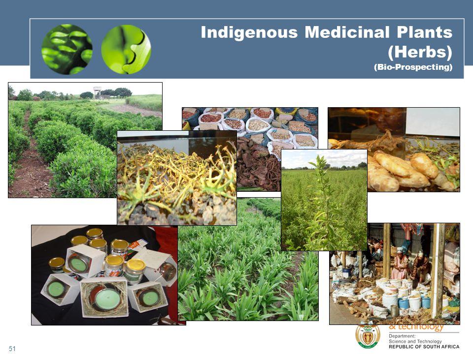 51 Indigenous Medicinal Plants (Herbs) (Bio-Prospecting)