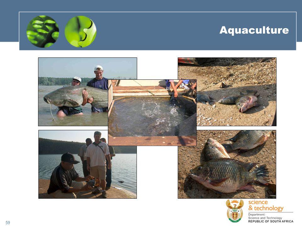 59 Aquaculture
