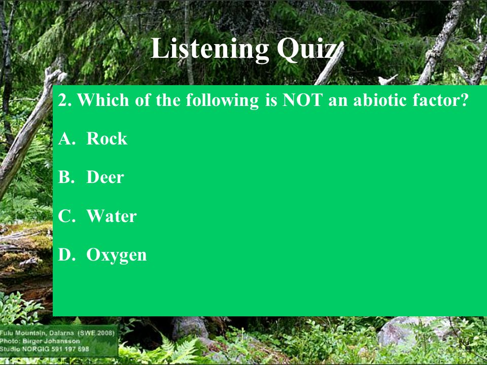 Listening Quiz 2. Which of the following is NOT an abiotic factor? A.Rock B.Deer C.Water D.Oxygen