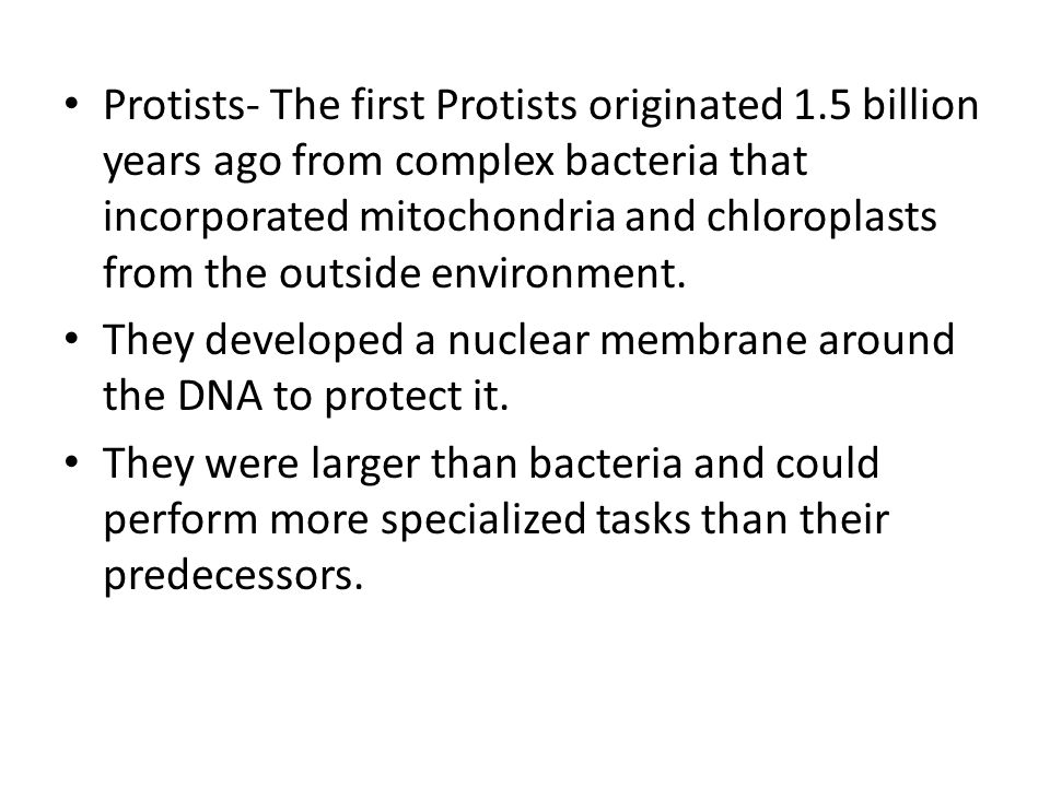 Protists- The first Protists originated 1.5 billion years ago from complex bacteria that incorporated mitochondria and chloroplasts from the outside e