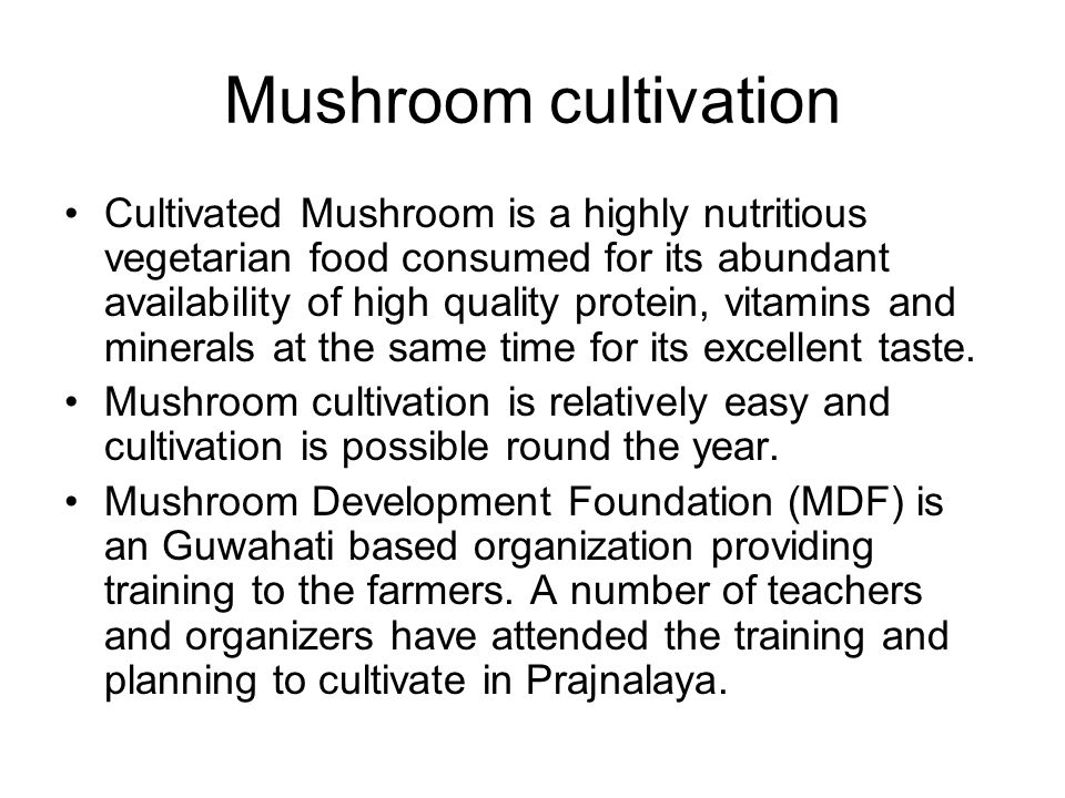 Mushroom cultivation Cultivated Mushroom is a highly nutritious vegetarian food consumed for its abundant availability of high quality protein, vitamins and minerals at the same time for its excellent taste.
