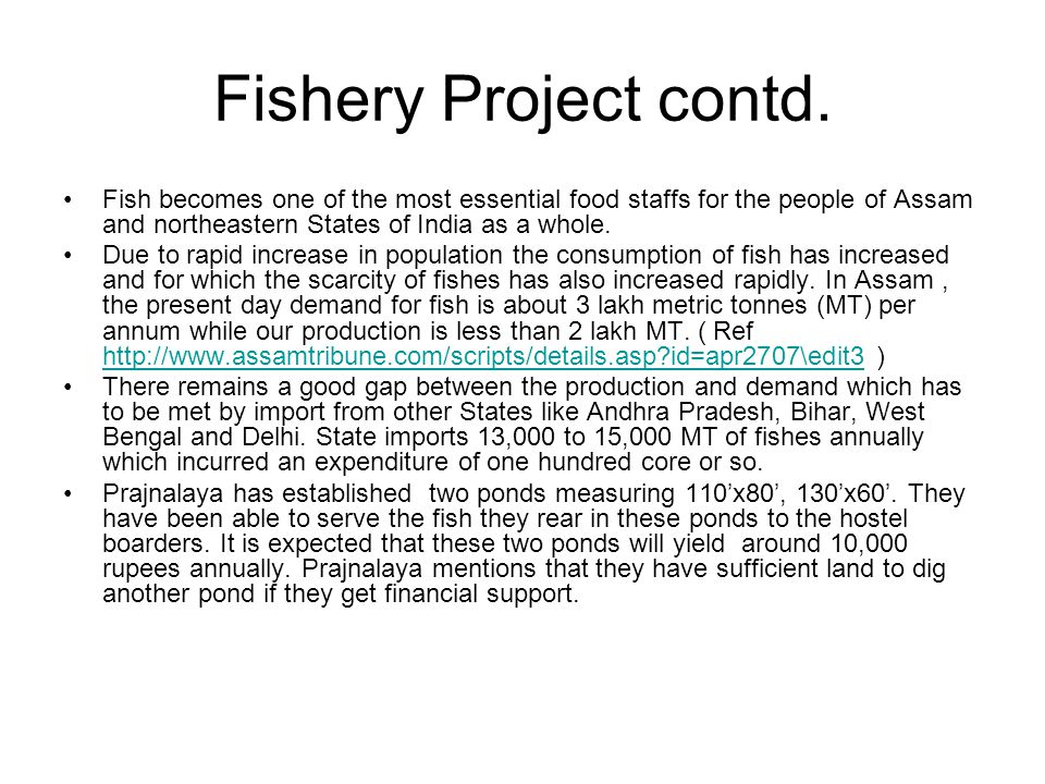 Fishery Project contd.