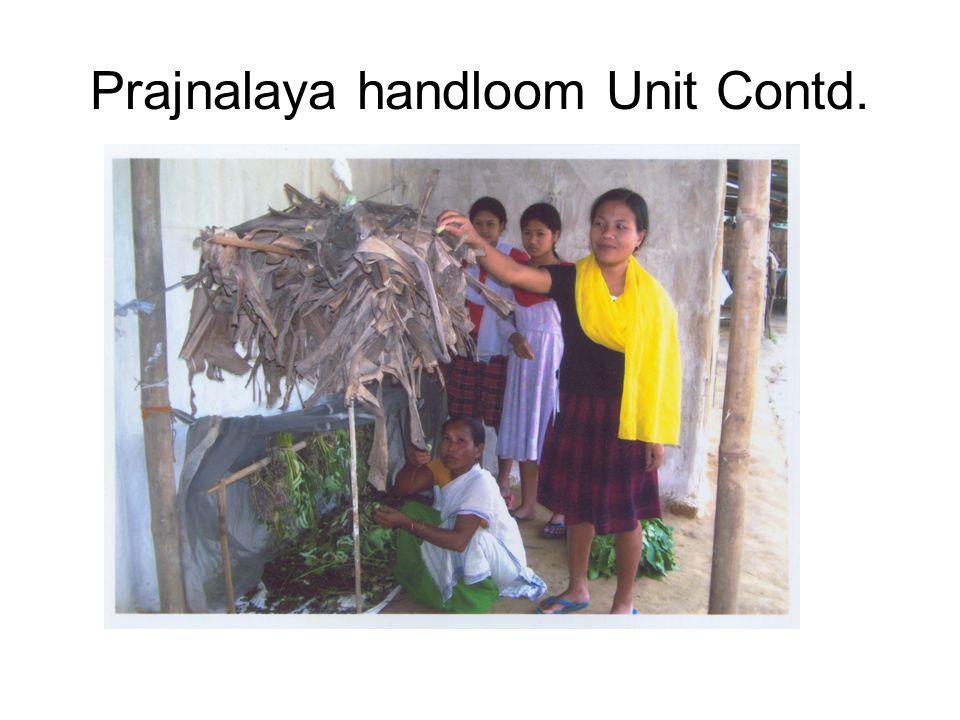 Prajnalaya handloom Unit Contd.