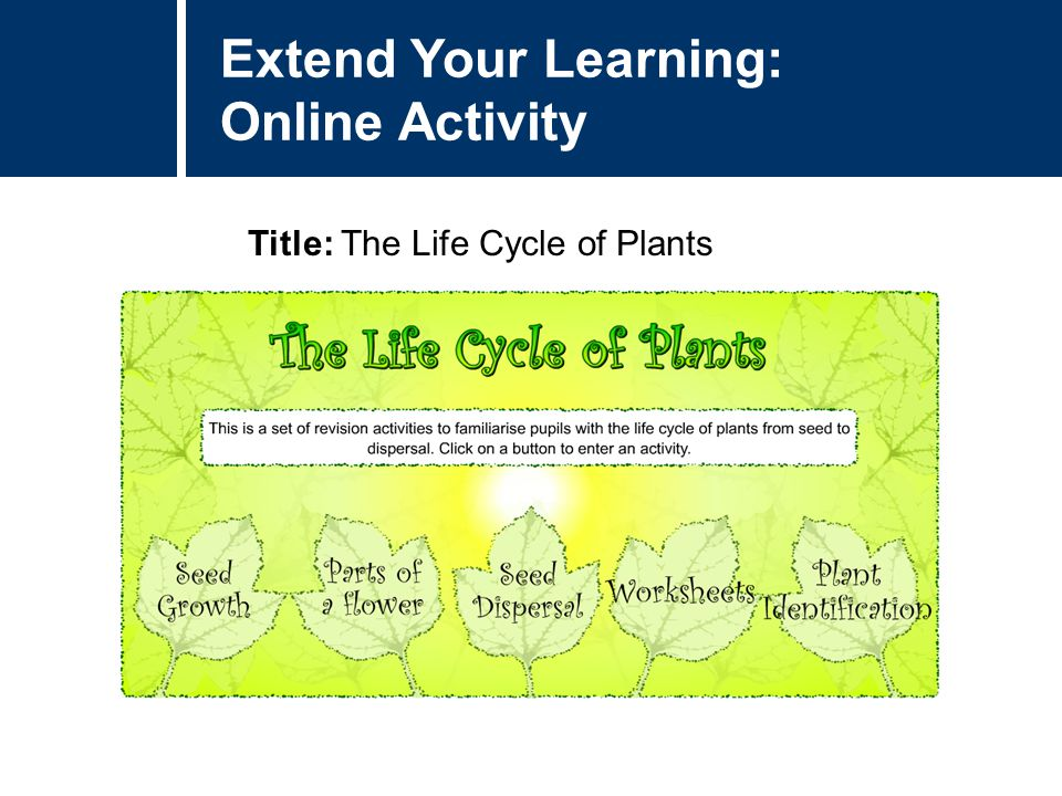 Extend Your Learning: Online Activity Title: The Life Cycle of Plants