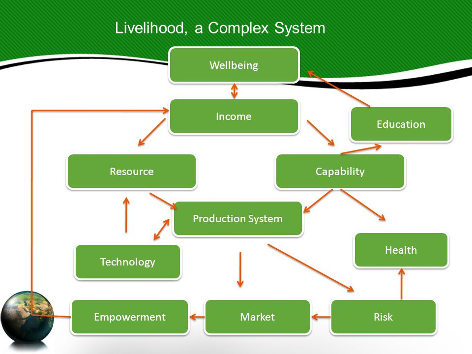 Wellbeing Production System Resource Income Capability Education Market Health Technology Empowerment Risk Livelihood, a Complex System