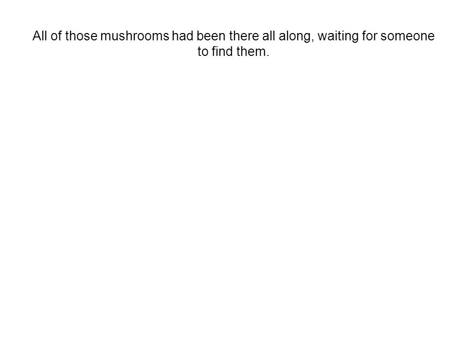 All of those mushrooms had been there all along, waiting for someone to find them.