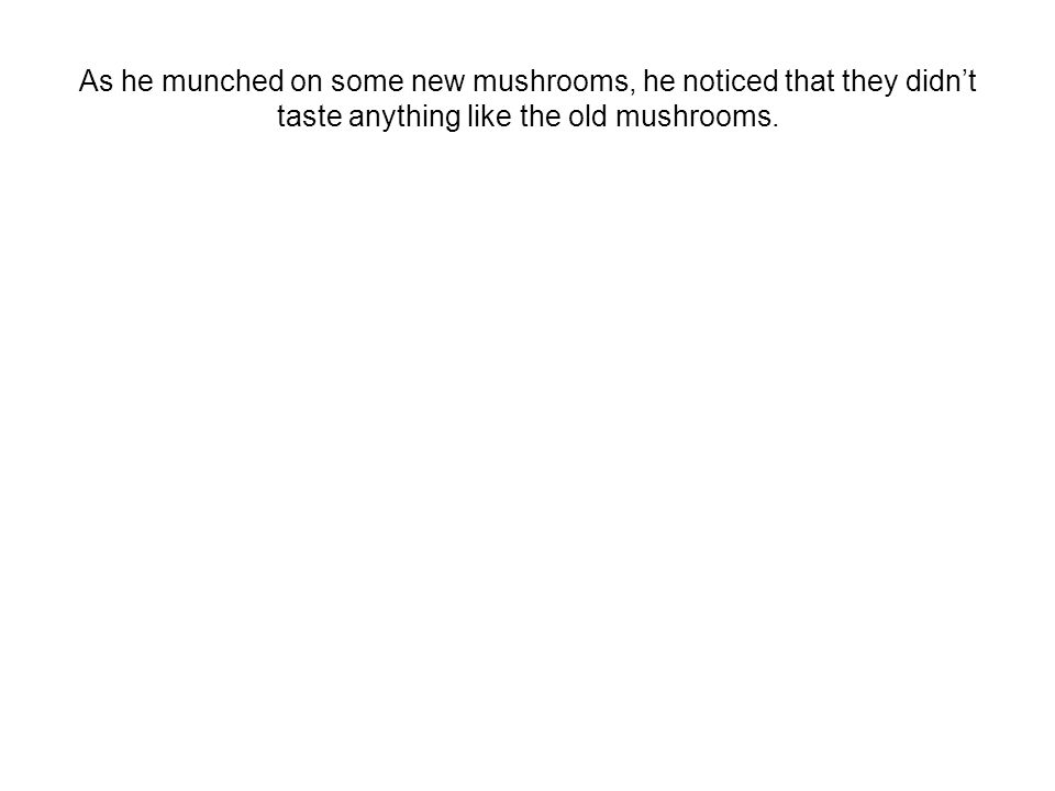 As he munched on some new mushrooms, he noticed that they didn't taste anything like the old mushrooms.