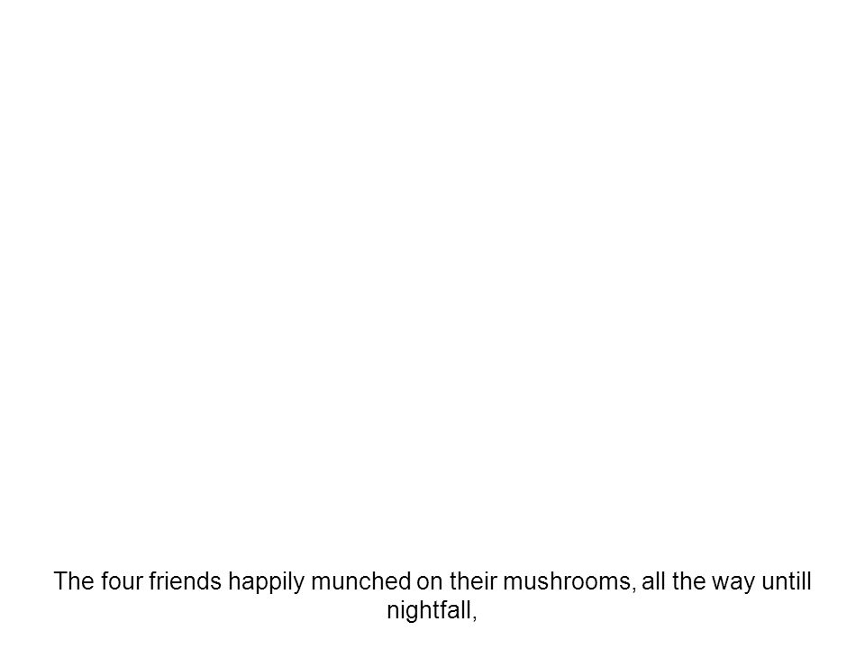The four friends happily munched on their mushrooms, all the way untill nightfall,