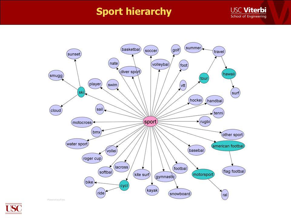 Sport hierarchy