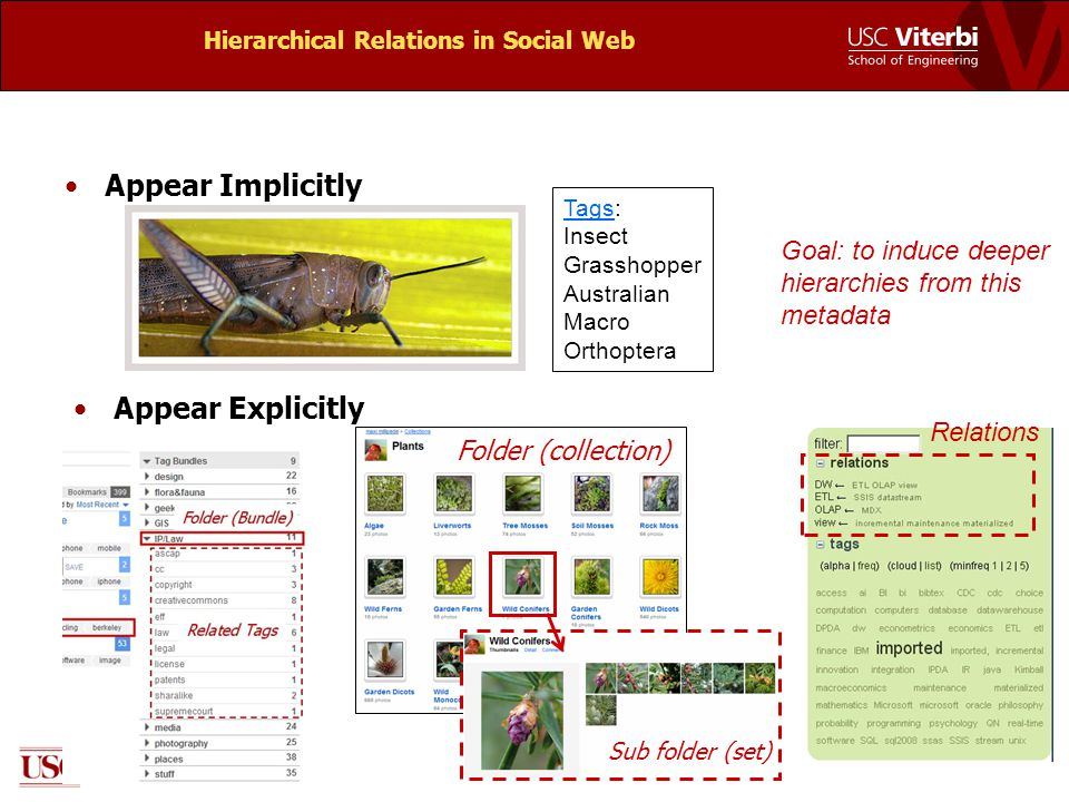 Hierarchical Relations in Social Web Appear Implicitly Appear Explicitly Tags: Insect Grasshopper Australian Macro Orthoptera Folder (collection) Sub folder (set) Relations Goal: to induce deeper hierarchies from this metadata