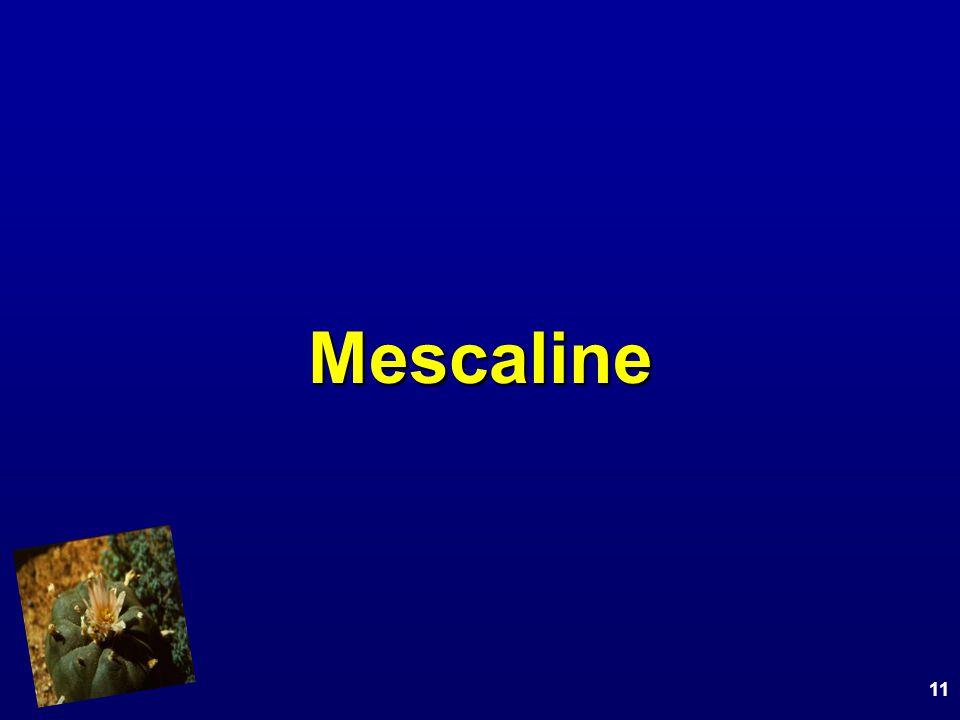 Mescaline 11