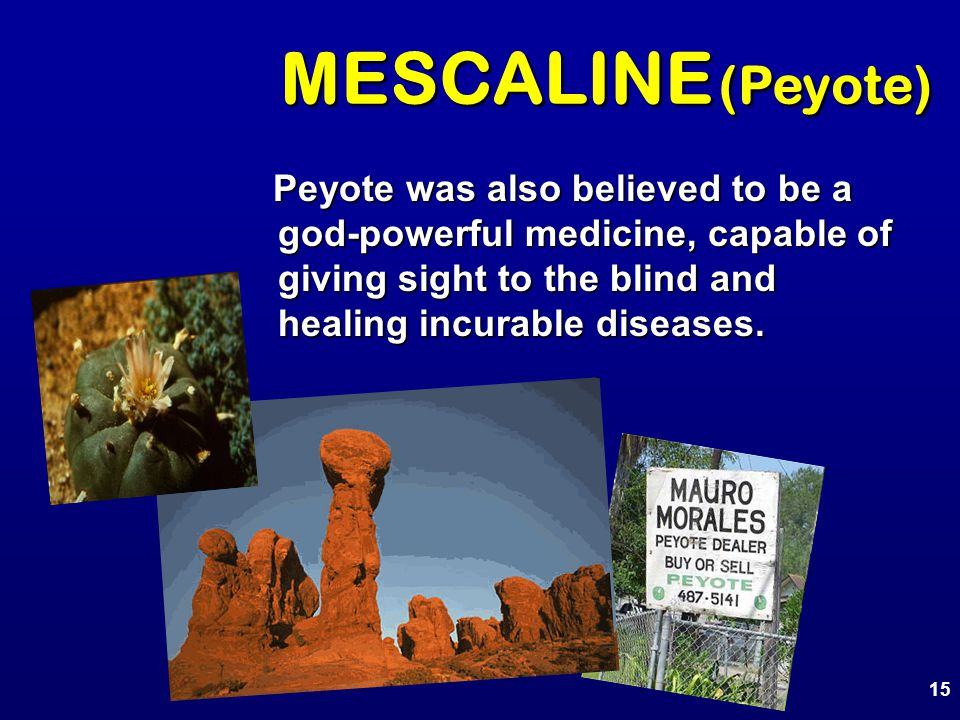 MESCALINE (Peyote) Peyote was also believed to be a god-powerful medicine, capable of giving sight to the blind and healing incurable diseases.