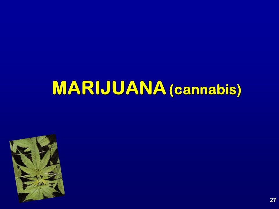27 MARIJUANA (cannabis)