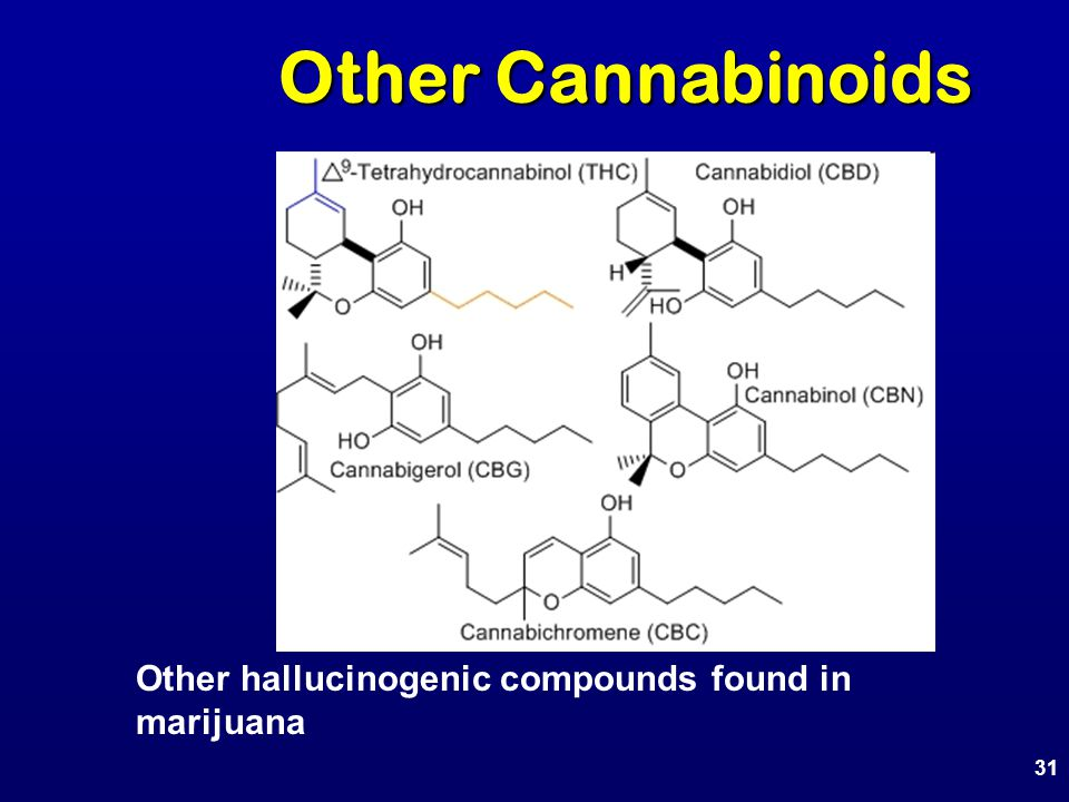 Other Cannabinoids 31 Other hallucinogenic compounds found in marijuana