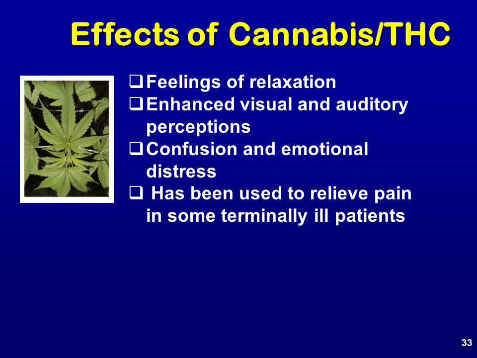 Effects of Cannabis/THC Effects of Cannabis/THC  Feelings of relaxation  Enhanced visual and auditory perceptions  Confusion and emotional distress  Has been used to relieve pain in some terminally ill patients 33
