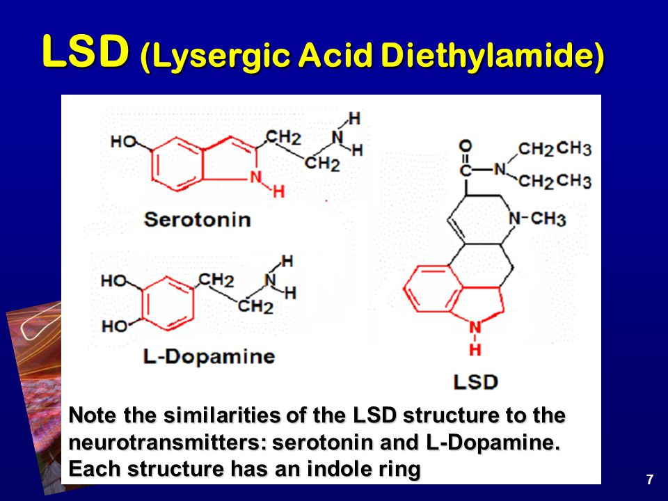 LSD (Lysergic Acid Diethylamide) Note the similarities of the LSD structure to the neurotransmitters: serotonin and L-Dopamine. Each structure has an