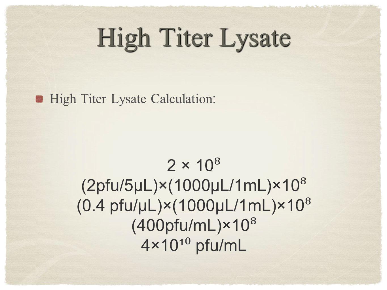 High Titer Lysate High Titer Lysate Calculation : 2 × 10 ⁸ (2pfu/5µL)×(1000µL/1mL)×10 ⁸ (0.4 pfu/µL)×(1000µL/1mL)×10 ⁸ (400pfu/mL)×10 ⁸ 4×10¹ ⁰ pfu/mL
