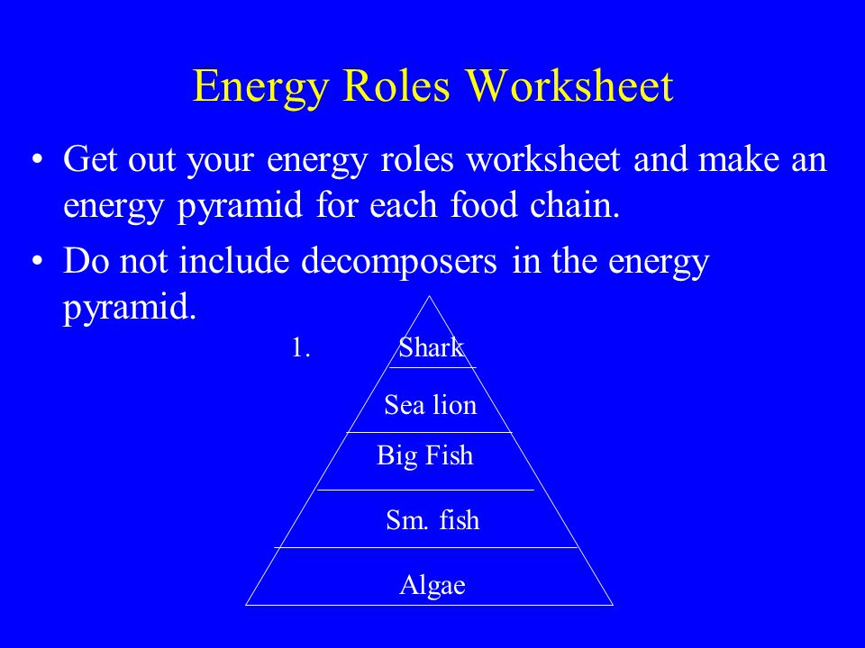 Energy Roles Worksheet Get out your energy roles worksheet and make an energy pyramid for each food chain.