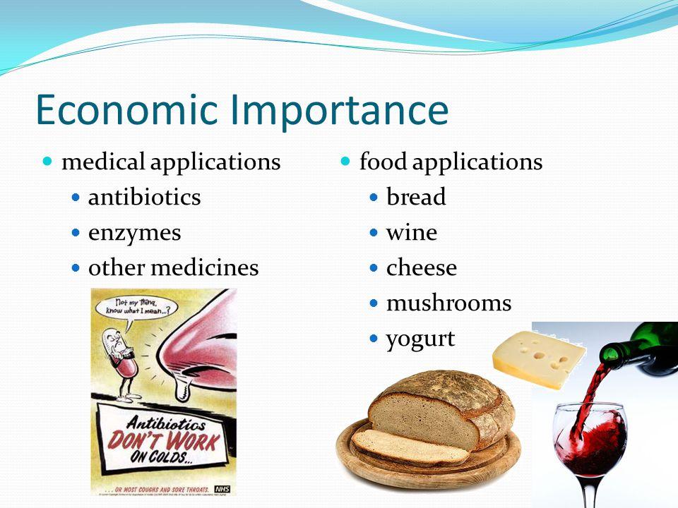 Economic Importance medical applications antibiotics enzymes other medicines food applications bread wine cheese mushrooms yogurt