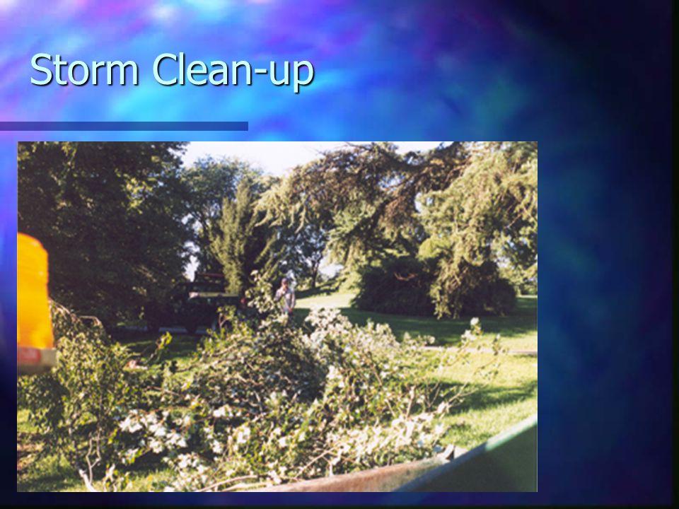 Storm Clean-up