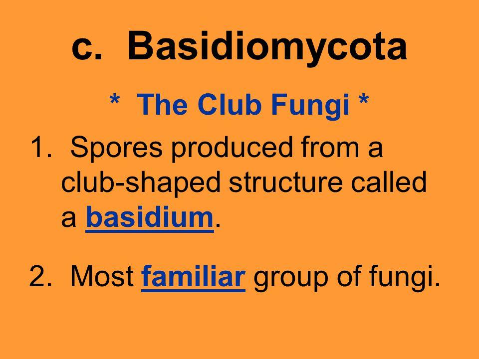 c. Basidiomycota * The Club Fungi * 1.