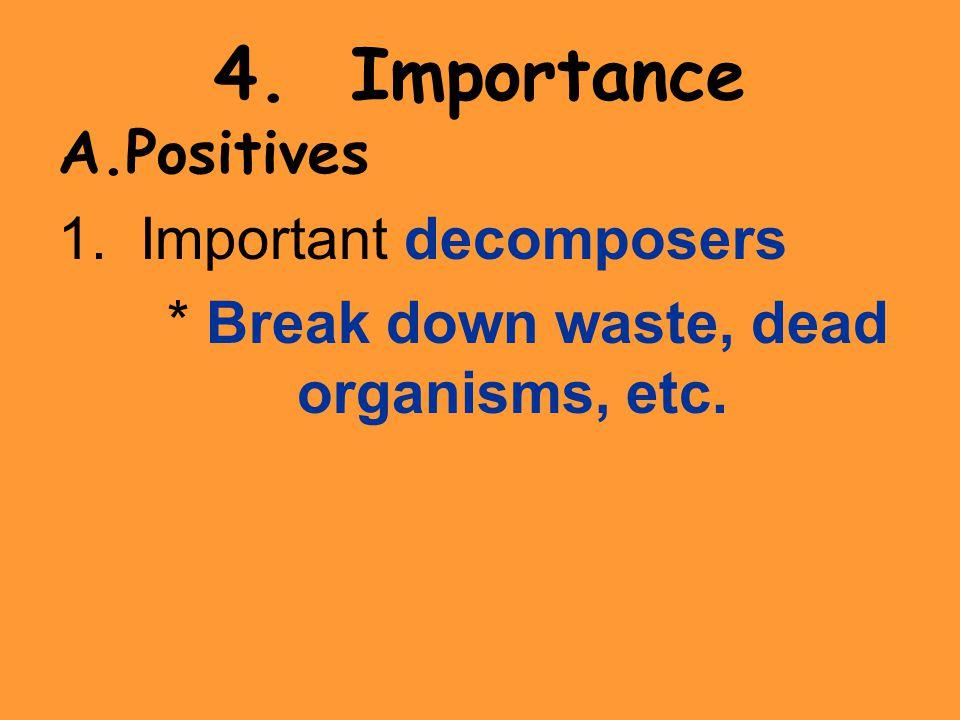 4. Importance A.Positives 1. Important decomposers * Break down waste, dead organisms, etc.