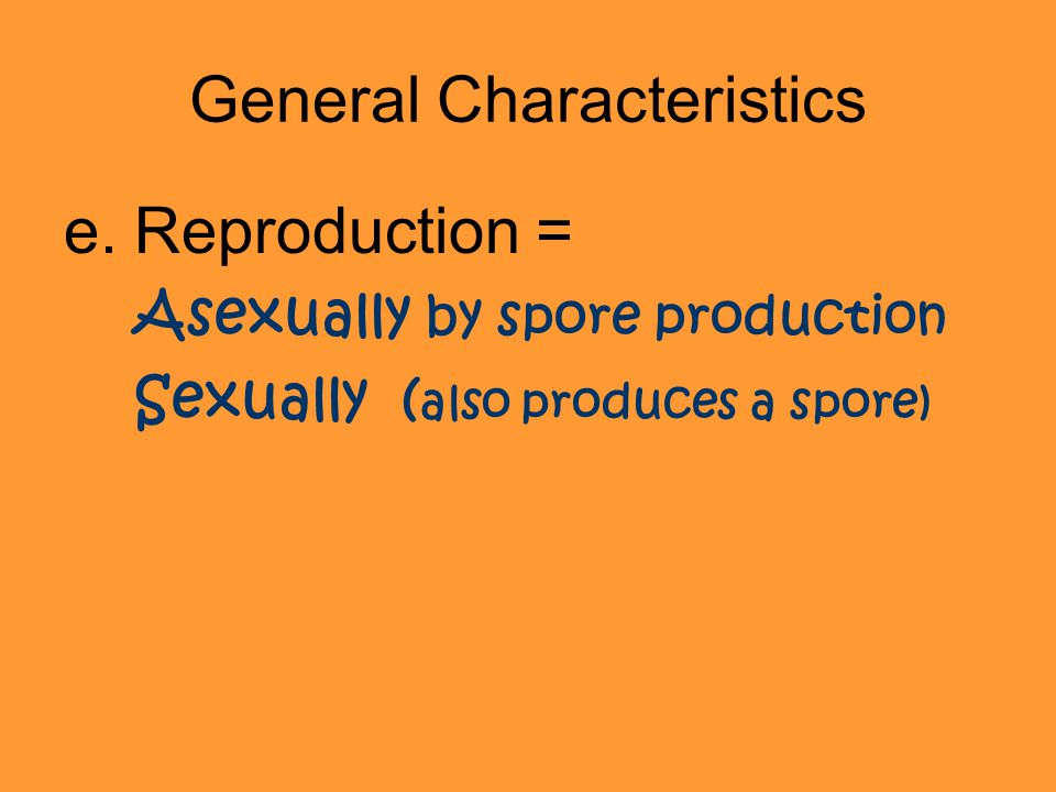 General Characteristics e.Reproduction = Asexually by spore production Sexually ( also produces a spore)