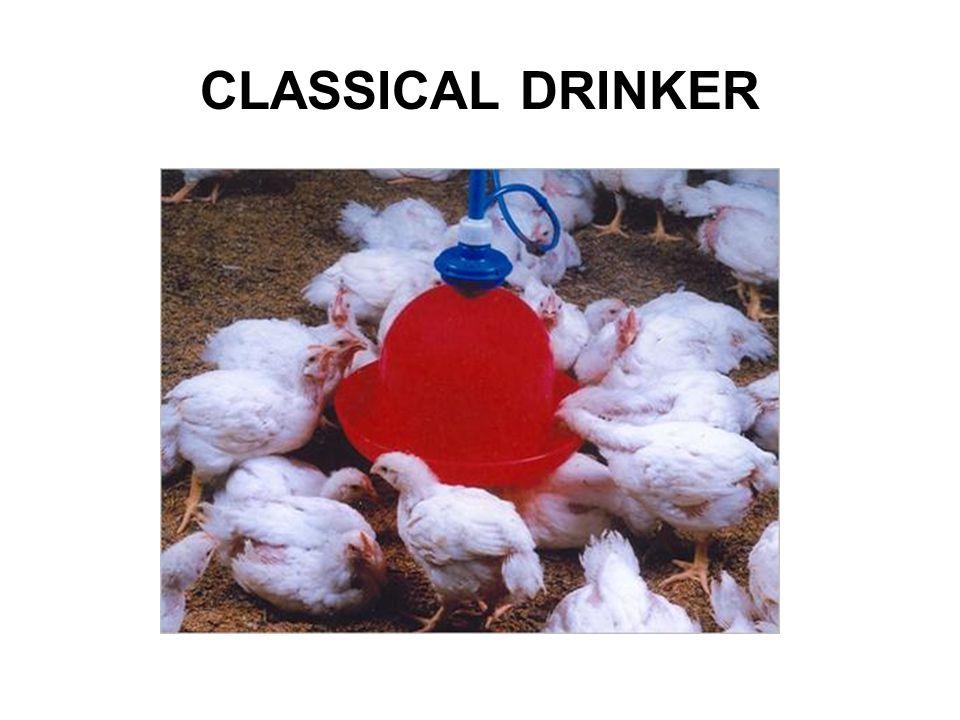 CLASSICAL DRINKER