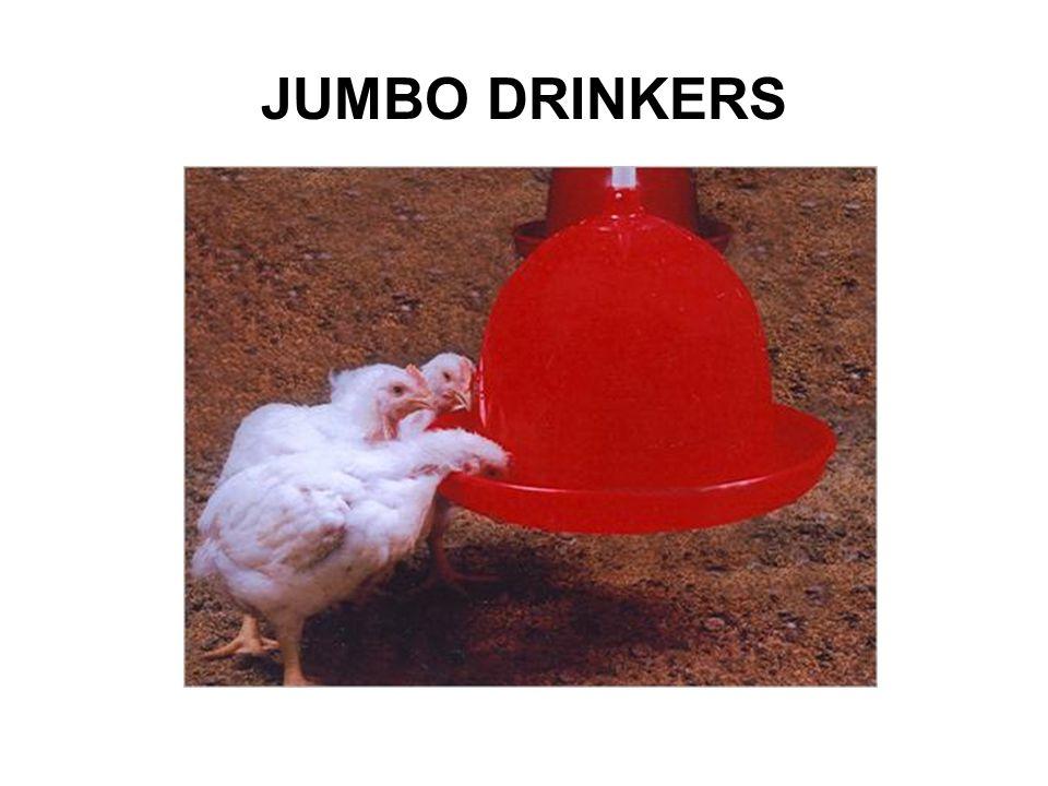 JUMBO DRINKERS