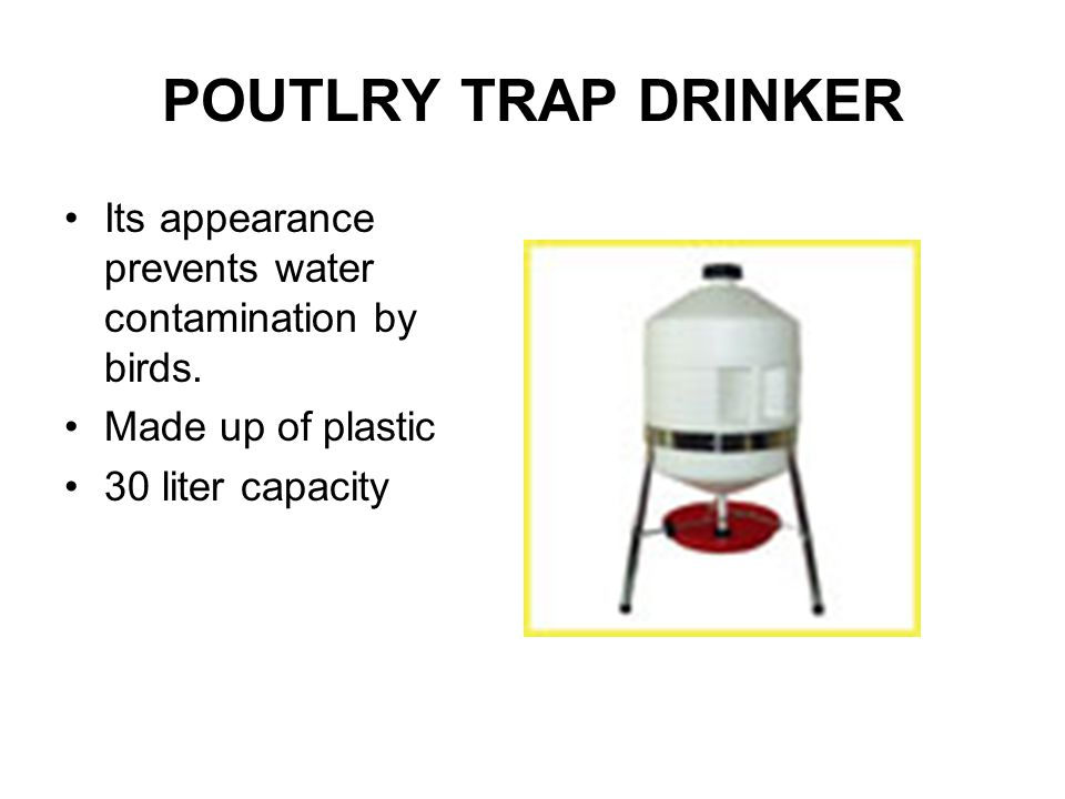 POUTLRY TRAP DRINKER Its appearance prevents water contamination by birds. Made up of plastic 30 liter capacity
