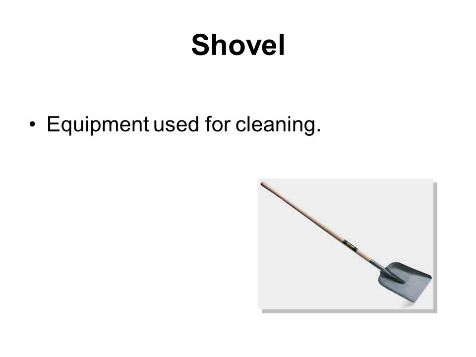 Shovel Equipment used for cleaning.