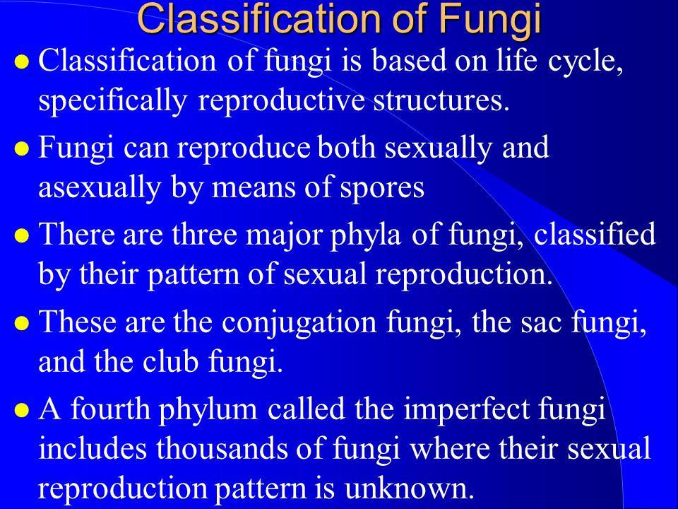Classification of Fungi Classification of fungi is based on life cycle, specifically reproductive structures. Fungi can reproduce both sexually and as