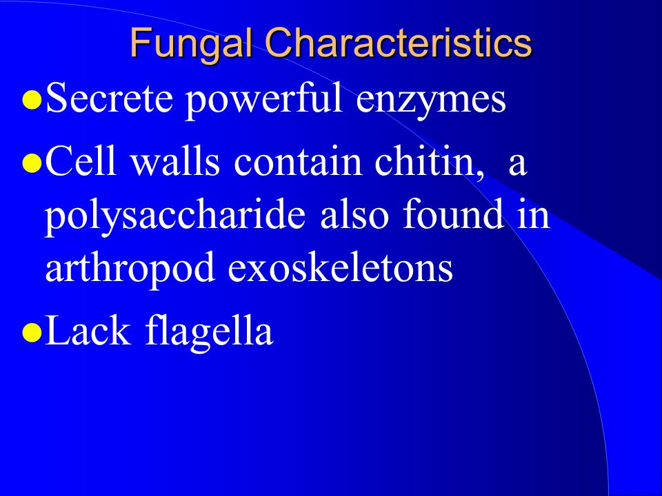 Fungal Characteristics Secrete powerful enzymes Cell walls contain chitin, a polysaccharide also found in arthropod exoskeletons Lack flagella