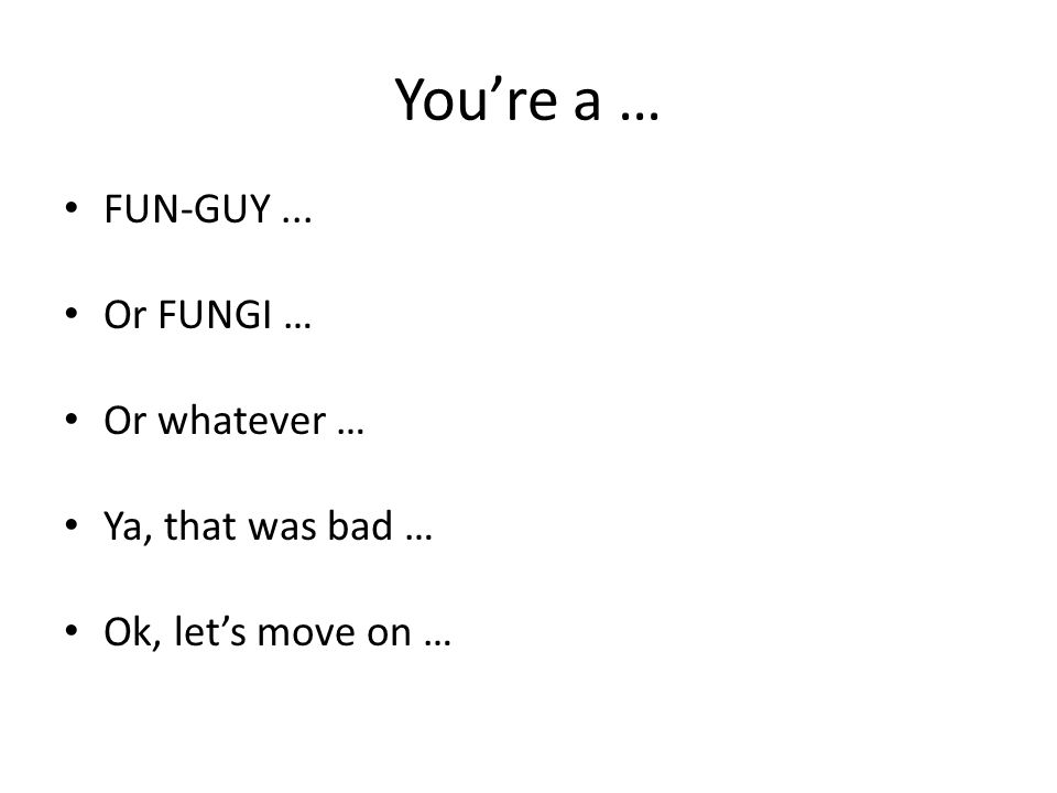 You're a … FUN-GUY... Or FUNGI … Or whatever … Ya, that was bad … Ok, let's move on …